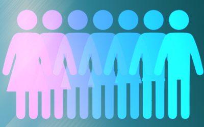 C500 El Plan de Igualdad en la empresa y el Responsable de Igualdad